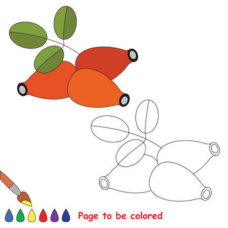 dogrose: Educational worksheet to be colored by sample. Easy educational paint game for preschool kids. Simple kid coloring page with Dogrose.