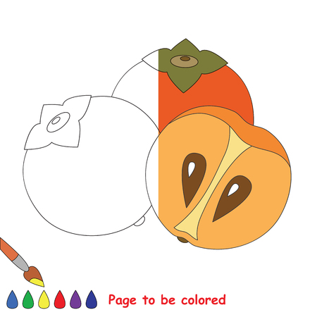 Persimmon to be colored, the coloring book to educate preschool kids with easy kid educational gaming and primary education of simple game level. The colorless half.