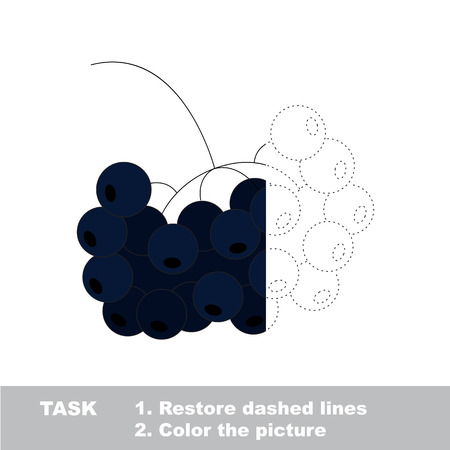 chokeberry: Vector trace game with berry.