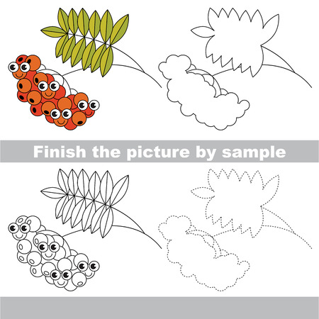 ashberry: Red Ash Berry. Drawing worksheet. Illustration