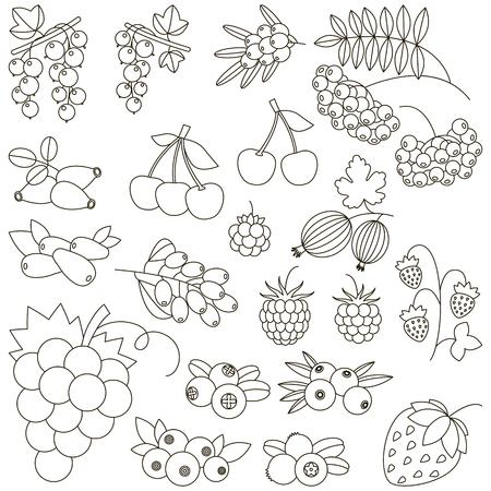 Conjunto De Divertidos Dibujos Animados Bayas Para Colorear. Libro ...