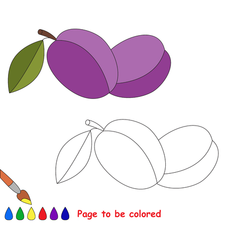 Two plums to be colored. Coloring book to educate preschool kids. Easy kid educational gaming and primary education of simple level of difficulty.