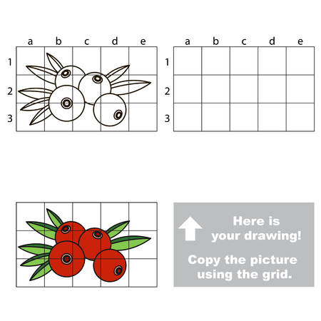 whortleberry: Copy the picture using grid lines. Easy educational game for kids. Simple kid drawing game with Red Cranberry. Illustration