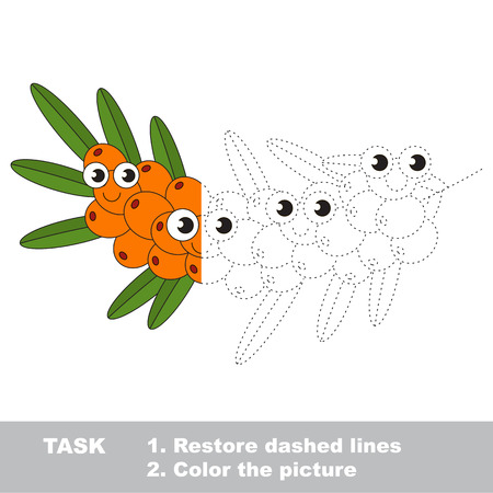 Buck thorn in vector to be traced. Restore dashed line and color the picture. Visual game for children. Easy educational kid gaming. Simple level of difficulty. Worksheet for kids education. Illustration