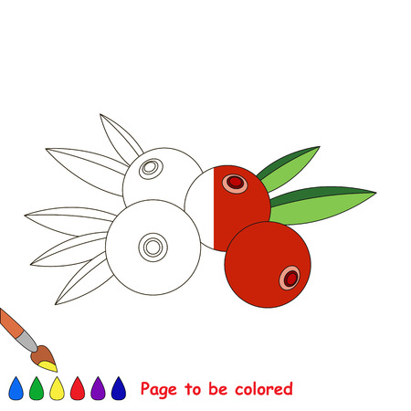 dashed: Red Cranberry in vector to be traced, restore dashed line and color the picture, the simple visual game with easy education game level for preschool kids. Illustration
