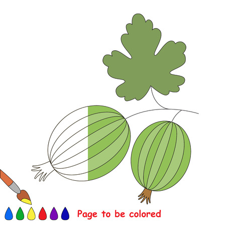 White Gooseberry in vector to be traced, restore dashed line and color the picture, the simple visual game with easy education game level for preschool kids.