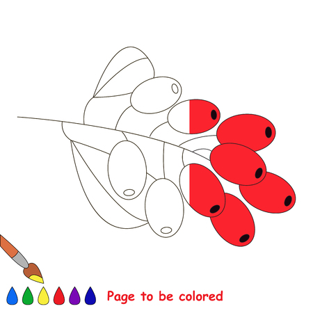 Red Barberry in vector to be traced, restore dashed line and color the picture, the simple visual game with easy education game level for preschool kids.