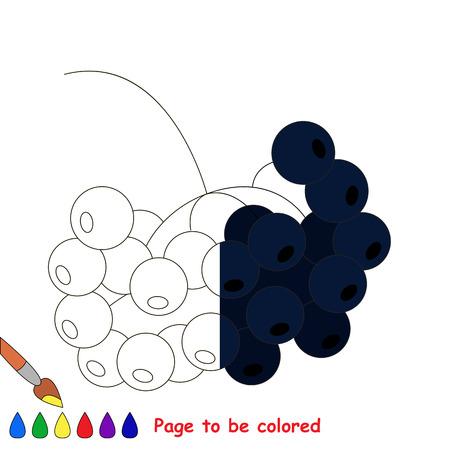 Rowan Negro, El Libro Para Colorear Para Educar A Los Niños ...