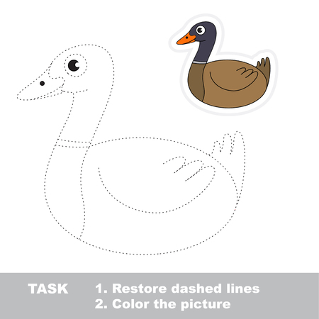 Wild Brown Duck. Dot to dot educational game for kids.