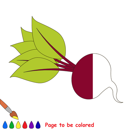 The Beet, the coloring book to educate preschool kids with easy gaming level, the kid educational game to color the colorless half by sample.