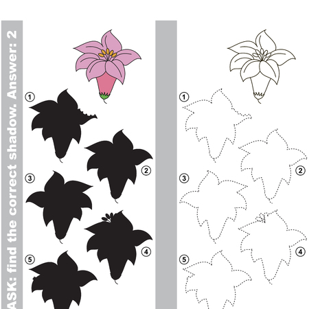 Pink Flower Lilly with different shadows to find the correct one, compare and connect object with it true shadow, the educational kid game with simple gaming level.