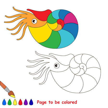 Rainbow Nautilus to be colored, the coloring book for preschool kids with easy educational gaming level.