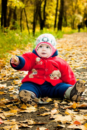 the child is sitting on yellow leaves in the street on a bright day