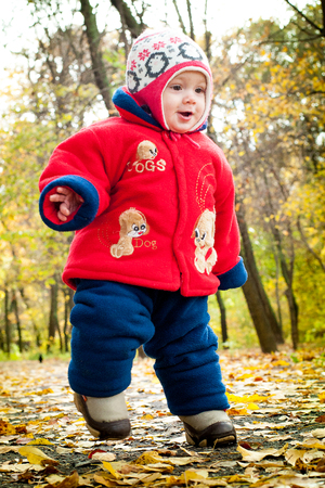 the child walks on yellow leaves on a bright autumn day