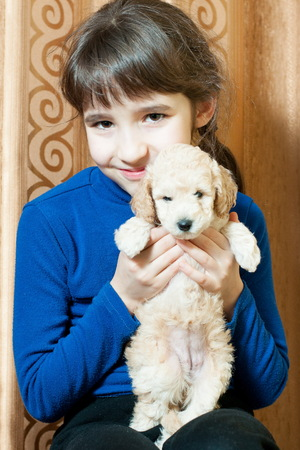 girl with beige breed poodle puppy indoors Stock Photo