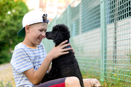 boy and black poodle in the open air communicate Stock Photo