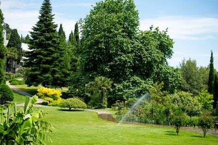 beautiful park on a bright clear day Stock Photo
