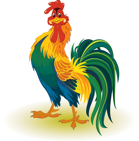 Colorful rooster Vector
