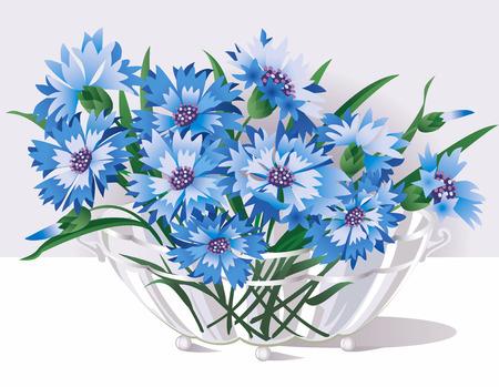 Cornflowers en un florero de vidrio