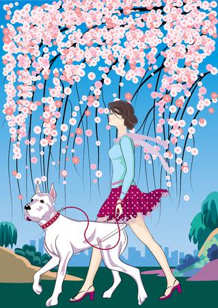 woman dog: chica paseos por el parque con su compa�ero