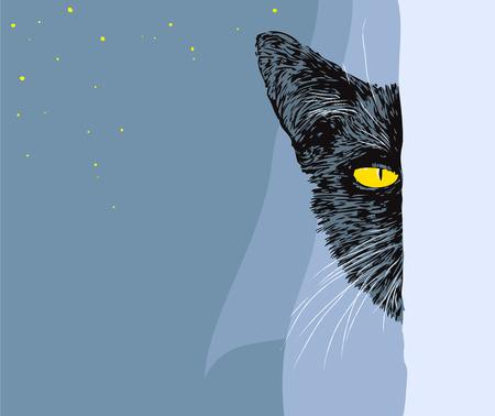 mischief: Black cat looking in the window Illustration