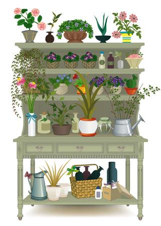 cultivating: Gabinete de madera retro con plantas de interior Vectores