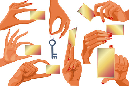 Set of womens hands holding empty business cards Vector
