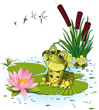 marsh plant: Cute frog with mosquito Illustration