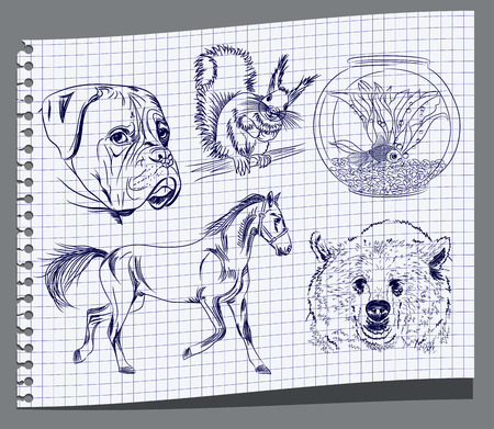 Drawing of animals Vector