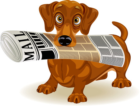 Vector illustration of cute dog holding the morning newspaper in his mouth  Vector