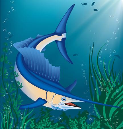 pez espada: Ilustraci�n vectorial de nataci�n marlin Vectores