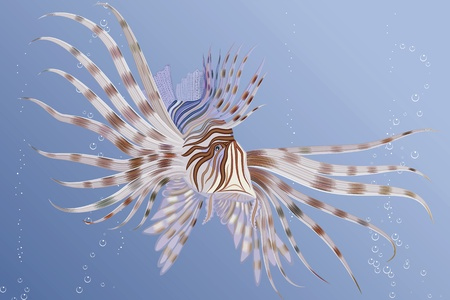 underwater fishes: illustration of an exotic lion fish swimming underwater