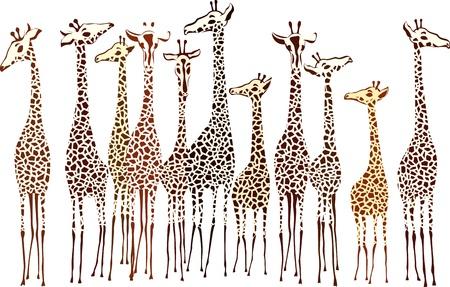Jirafas Ilustración de vector