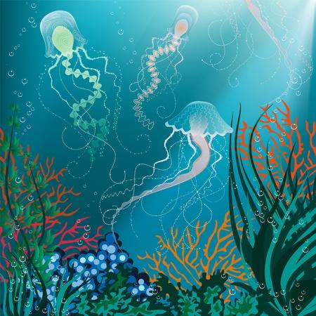 corales marinos: Ilustraci�n vectorial de medusas nadando bajo el agua