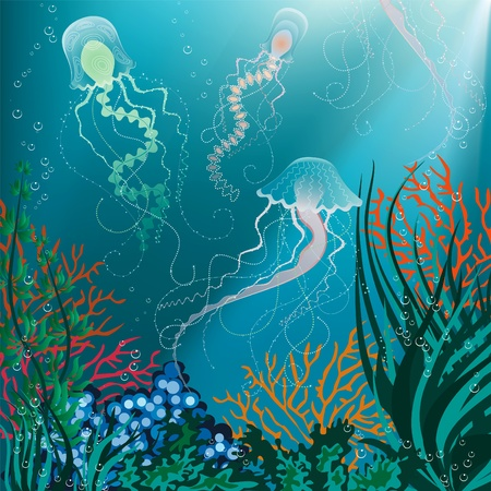 marine coral: Vector illustration of jellyfish swimming underwater