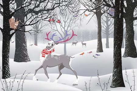 winter wallpaper: Bosque de invierno en el que hay un reno, una ardilla sentado en un �rbol y aves