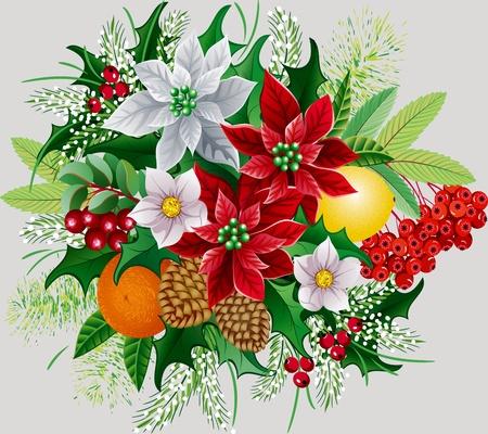 flor de pascua: Mont�n de Navidad con Euphorbia pulcherrima, holly, naranja, lim�n, rama de rowan, conos de pino y abetos ramas
