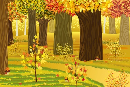 fall landscape:  illustration of dream autumn forest
