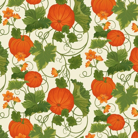 Vegetable background with pumpkins among leaves  Vector