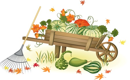 Handcart with heap of pumpkins - each pumpkin is very detailed and separate object Stock Vector - 10181645