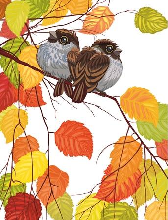 Dos gorriones lindos sentado en la rama sobre fondo blanco Ilustración de vector