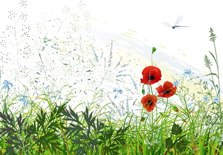 Landscape with wild grass and flowers and flying dragonfly Vector