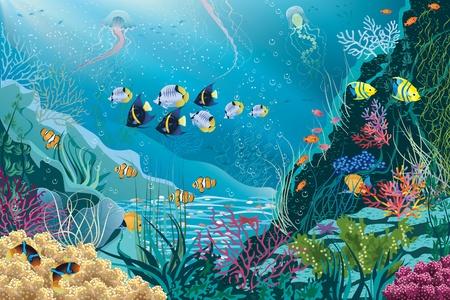 undersea: Paisaje submarino con plantas acu�ticas y diversos peces tropicales nadando todos los objetos se agrupan