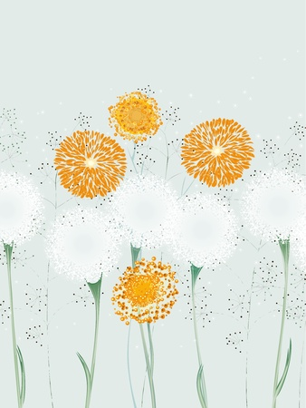 dandelion flower: Illustration of abstract flowers, dandelions and herbs