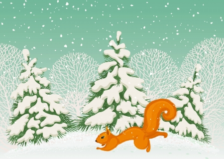 red squirrel: Running squirrel in the winter forest