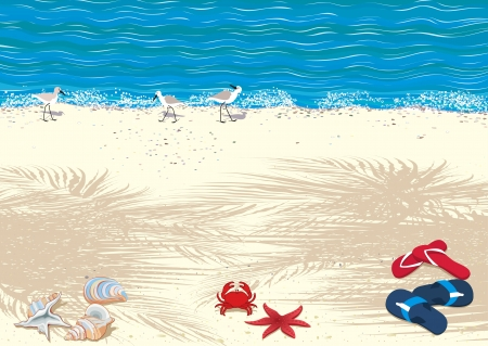 seashores: Background with tropical sand beach Illustration