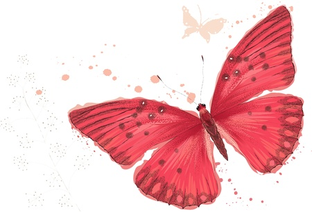 watercolor technique: Red butterfly in watercolor technique on white background