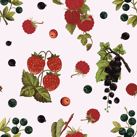Background with various berries   strawberry, black-currant, huckleberry, raspberry Vector