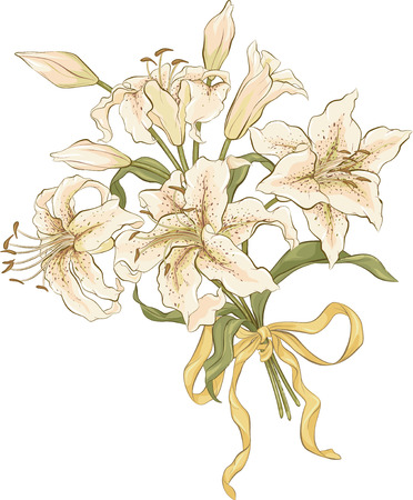 Bunch of lilies isolated over white background Vector
