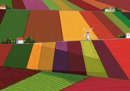Background with colorful harvesting fields